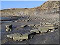 SY9079 : Kimmeridge Bay from Washing Ledge by Jim Champion