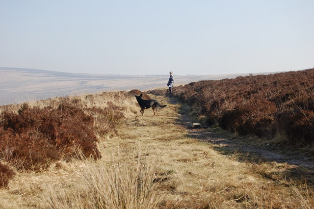 One of the many tracks over Exmoor