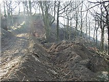 SE1322 : Site track at the landslip, Reins Wood, Rastrick by Humphrey Bolton