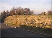 SE1220 : Roadside embankment, Pinfold Lane, Rastrick by Humphrey Bolton