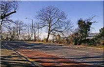 TQ2996 : Enfield Road, Enfield, EN2, looking west by Christine Matthews