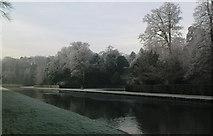 SE2768 : Water Gardens in Winter by Matthew Hatton
