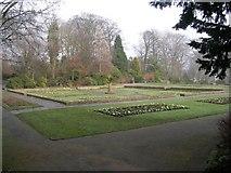SE0823 : Flower Beds - Manor Heath Park, Halifax by Betty Longbottom