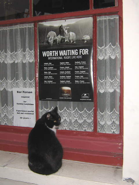 Worth waiting for ... by Ian Capper