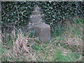 O1765 : Milestone 17 at Tobersool, Gormanston by Kieran Campbell