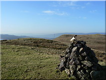 NS2472 : Cairn on Hillside Hill by william craig