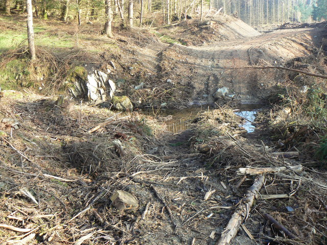 Dunoon, New Forestry Track