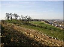 SE1219 : Knoll, New Hey Road, Fixby by Humphrey Bolton