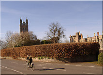 ST6390 : St. Mary's Church, Thornbury & The Castle by Ken Wilkins