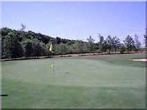 SU6154 : Weybrook Park - 12th Green by Alan Swain