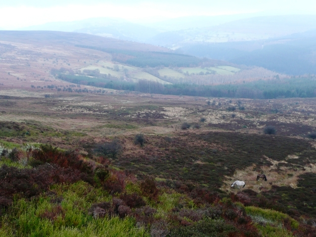 South from the flank of Bal-Mawr