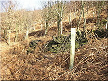 SE1219 : Boundary wall of Storth Wood, Elland by Humphrey Bolton