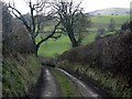 SO2576 : Muddy lane in rolling hills by Row17