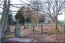 SE1321 : St Matthew's Churchyard, Vegetation Cleared by Richard Kay