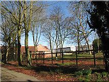 TF9203 : Farm sheds across paddock by Evelyn Simak