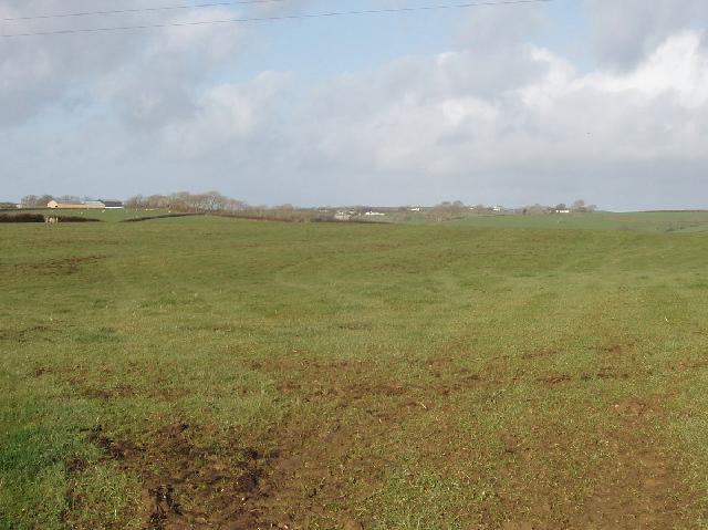 Fields by Moor View