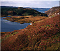 NC1837 : Loch Duartmore and Loch na Creige Ruaidhe beyond by Peter Bond