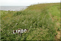 ND4893 : Limbo, near Honeygeo by hayley green