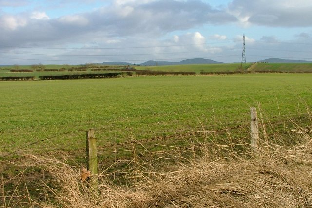 Fence and Arable Field
