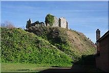 TM1473 : Eye Castle by Bob Jones