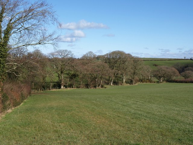 Field near Minnimeer