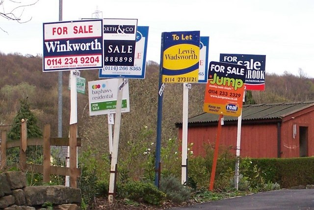 Forest of For Sale Signs in Oughtibridge