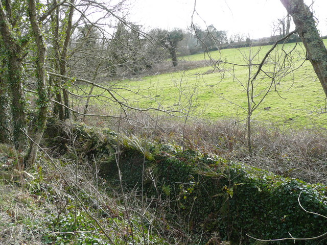Field near Carnanton