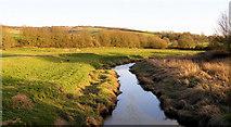 TQ5203 : Cuckmere River from White Bridge, Alfriston by Kevin Gordon