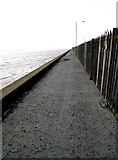TA0827 : Footpath at the side of the River Humber by Andy Beecroft