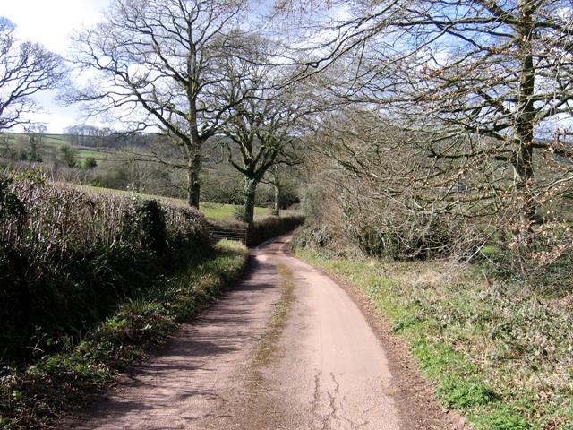 Lane to Tedbridge, Bradninch, Devon