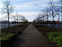 NS5170 : Pathway in Great Western Retail Park by Stephen Sweeney
