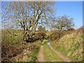 SN1344 : Bridleway near Monington by Dylan Moore