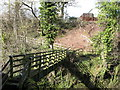 NY9538 : Footbridge over Rookhope Burn by Mike Quinn