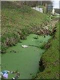 SX8578 : Flood ditch near Finlake by paul dickson