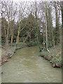 TL4551 : River Granta at Shelford by Keith Edkins