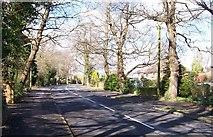 SU5707 : Park Lane, looking North-Fareham by Colin Babb