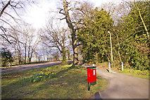 TQ2996 : Cycle Track, Bramley Road, Enfield by Christine Matthews