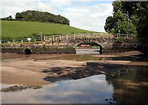 SX2555 : Sand bank on the East Looe river  nr Trenant Park by roger geach
