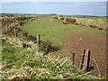 SX1387 : Odd-shaped field near A39 by Derek Harper