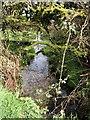 SX1387 : River Camel near Hendraburnick by Derek Harper