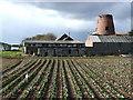 SE9842 : Mill Farm, Etton by Paul Glazzard