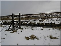 NC9831 : Bridge over the Berriedale Water by Colin Kinnear