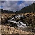 SN8060 : Rapids in the Nant Gwinau by Rudi Winter