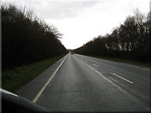 TF6731 : Looking south down A149 by Peter Fleming