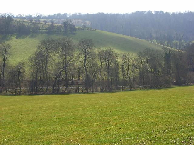 Pastures, Wormsley Estate