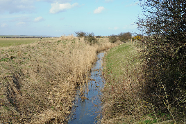 North Low near Goswick
