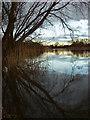 SE8530 : Fishing ponds, Newport by Paul Harrop