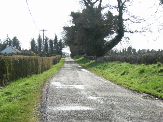 Minor Road in Haystown & Carnuff Little, Co. Meath