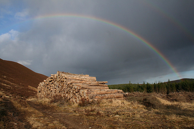 Timber pile by Clashninian under a rainbow