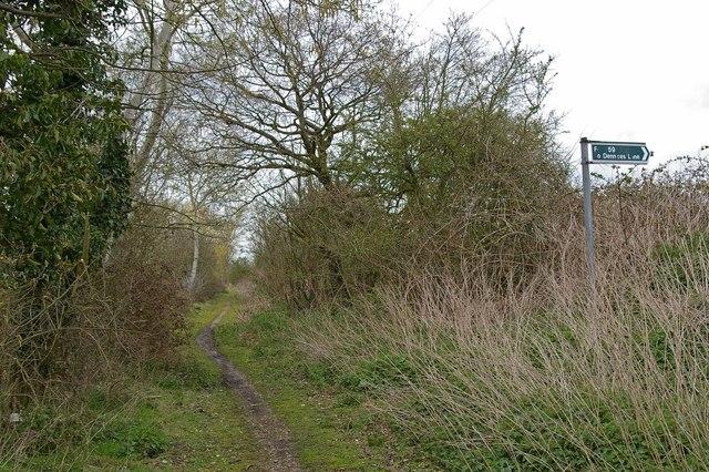 Footpath 259